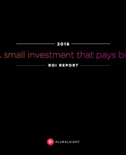 A small investment that pays big – ROI Report