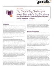 Big Data's Big Challenges Need Gemalto's Big Solutions