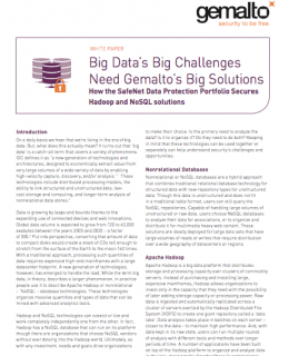 Big Data's Big Challenges Need Gemalto's Big Solutions
