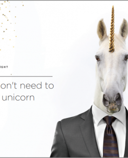 need 260x320 - You don't need to hire a unicorn