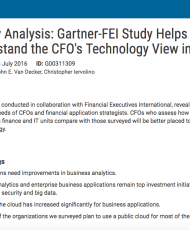 Survey Analysis: Gartner-FEI Study Helps You Understand the CFO's Technology View in 2016
