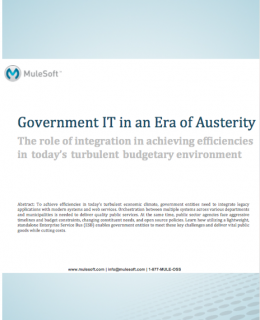 Screen Shot 2018 01 12 at 5.54.36 PM 260x320 - Government IT in an Era of Austerity