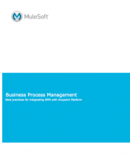 Screen Shot 2018 01 16 at 12.11.40 AM 190x230 - Business Process Management (BMP)