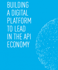 Screen Shot 2018 01 16 at 12.28.08 AM 190x230 - Building a Digital Platform to Lead in the API Economy