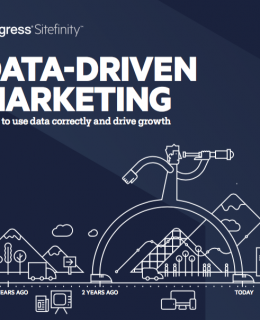 Screen Shot 2018 02 08 at 1.26.31 AM 260x320 - Data-Driven Marketing: How to use data correctly and drive growth