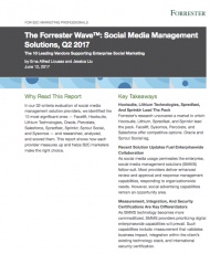 Screen Shot 2018 02 12 at 9.02.13 PM 190x230 - Forrester Wave SMM 2017