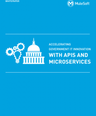 2 4 190x230 - Accelerating Government IT Innovation with APIs and Microservices