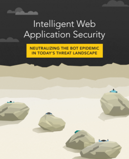 1 1 260x320 - Intelligent Web Application Security