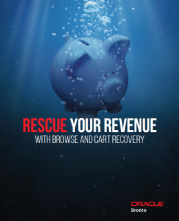 RevenueRescue18 cover 260x320 - Rescue Your Revenue With Browse and Cart Recovery
