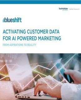 The State of AI in Marketing: Activating Customer Data for AI Powered Marketing (from aspirations to reality)