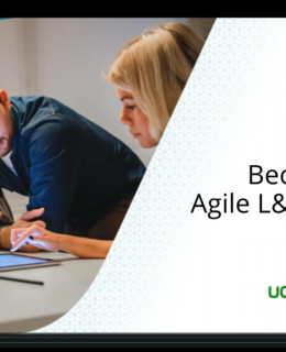 How to Become an Agile L&D Team