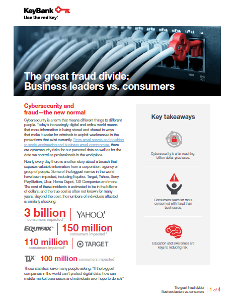 The great fraud divide Business leaders vs consumers coverpage - The Great Fraud Divide: Business Leaders vs Consumers