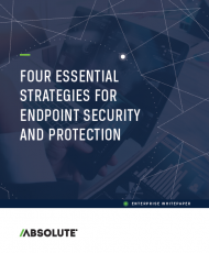 Four Essential Strategies for Endpoint Security