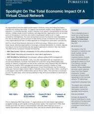 The Total Economic Impact of a Virtual Cloud Network