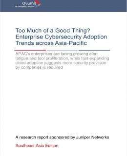 Too Much of a Good Thing? Enterprise Cybersecurity Adoption Trends across ASEAN