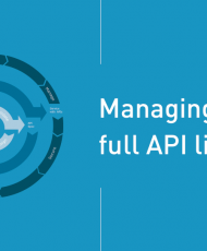 Screen Shot 2019 01 16 at 10.52.48 PM 190x230 - Managing the Full API Lifecycle