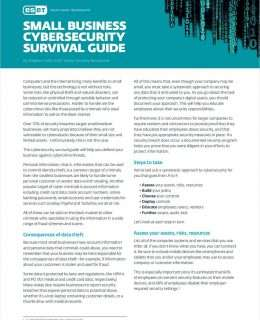Small Business Cybersecurity Survival Guide