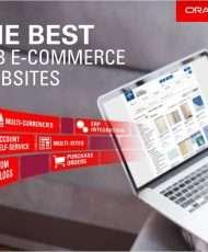 The Best B2B E-Commerce Websites