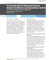 Screen Shot 2019 02 05 at 7.57.19 PM 190x230 - Forrester Wave Report: Multimodal Predictive Analytics and Machine Learning Solutions