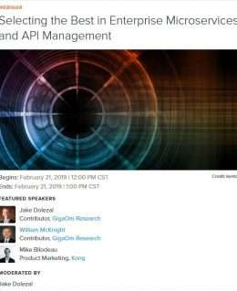 Selecting the Best in Enterprise Microservices and API Management