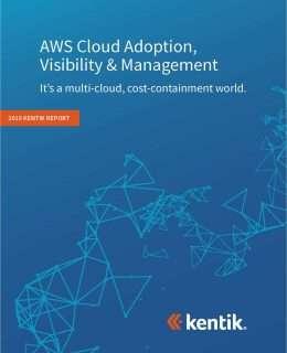 AWS Cloud Adoption, Visibility & Management 2019