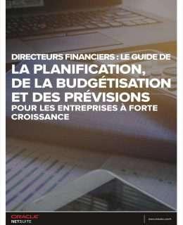 DIRECTEURS FINANCIERS: LE GUIDE DE LA PLANIFICATION DE LA BUDGETISATION ET DES PREVISIONS POUR LES ENTREPRISES A FORTE CROISSANCE