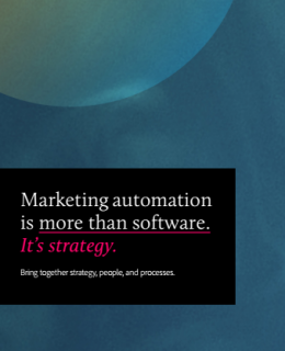 2 4 260x320 - Marketing Automation is more than software