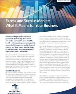 Excess and Surplus Market: What It Means for Your Business