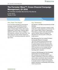 4 6 190x230 - Forrester Wave: Cross Channel Campaign Management