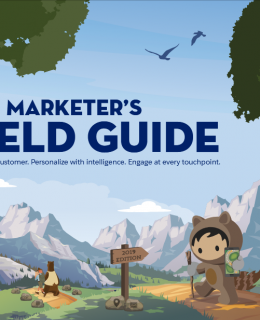 Screenshot 2019 06 18 mc marketing fieldguide customer trailblazer pdf 260x320 - The Marketer's Field Guide