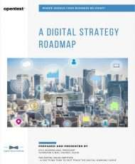 Where should your business be going? A Digital Strategy Roadmap