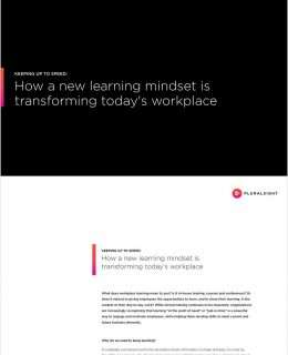 Keeping Up to Speed: How a New Learning Mindset is Transforming Today's Workplace