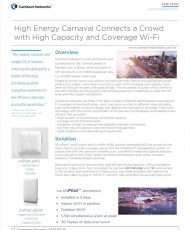 High Energy Carnaval Connects a Crowd with High Capacity and Coverage Wi-Fi