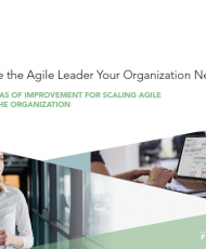 3 190x230 - Become the Agile leader your organization needs