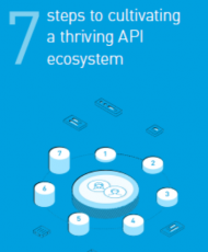 2 6 190x230 - 7 steps to cultivate a thriving API ecosystem