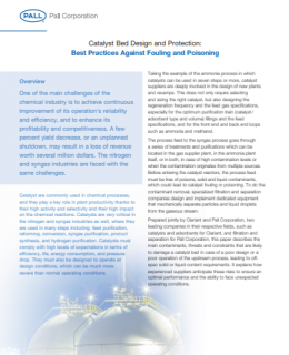 1 3 260x320 - Catalyst Bed Design and Protection: Best Practices Against Fouling and Poisoning