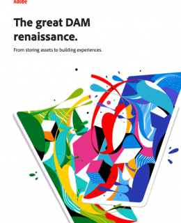 Screenshot 2020 10 20 DAMRenaissance pdf 260x320 - The Great DAM Renaissance: From Storing Assets To Building Experiences