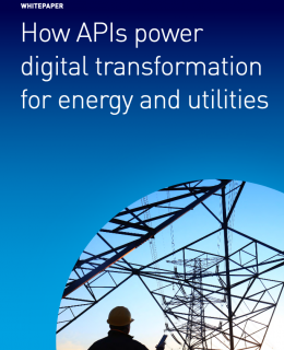 Screenshot 2020 11 15 How APIs power digital transformation for energy and utilities 1 pdf 260x320 - Whitepaper - How APIs power digital transformation for energy and utilities