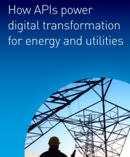 Screenshot 1 19 190x230 - How APIs power digital transformation for energy and utilities