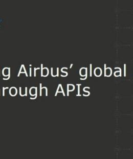 Screenshot 2 18 260x311 - Digitizing Airbus global supply chain through APIs