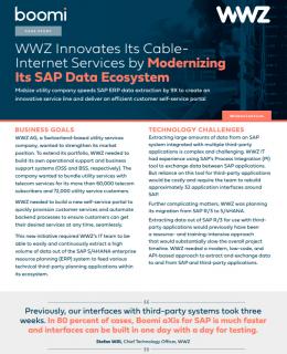 Screenshot 1 34 260x320 - How WWZ Modernized an SAP Data Ecosystem With Boomi