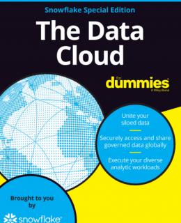 Screenshot 1 6 260x320 - THE DATA CLOUD FOR DUMMIES