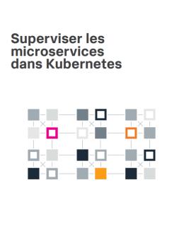 Screenshot 1 44 260x320 - Superviser les microservices dans Kubernetes